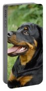 Young Rottweiler Portable Battery Charger