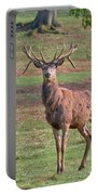 Young Stag Portable Battery Charger