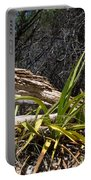 Pedernales Park Texas Yucca By The Dead Tree Portable Battery Charger