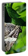 Zebra Long-wing Butterfly  Portable Battery Charger