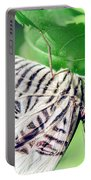 Zebra Long-wing Close-up Portable Battery Charger