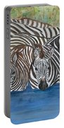 Zebra Pool Portable Battery Charger