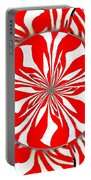 Zebra Red Swirling Kaleidoscope  Portable Battery Charger