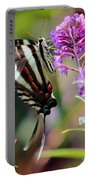 Zebra Swallowtail Butterfly At Butterfly Bush Portable Battery Charger