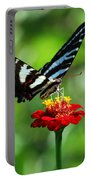 Zebra Swallowtail Butterfly On A Red Zinnia Portable Battery Charger