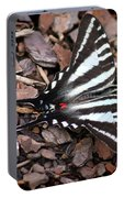 Zebra Swallowtail Butterfly Square Portable Battery Charger
