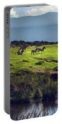 Zebras On Green Grassy Hill. Ngorongoro. Tanzania Portable Battery Charger