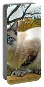 Zing The Cat In The Fall Portable Battery Charger