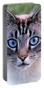 Zing The Cat Looking At Us Portable Battery Charger