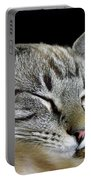 Zing The Cat Sleeping Portable Battery Charger