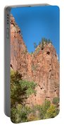 Zion Walls Portable Battery Charger