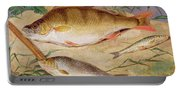 An Angler's Catch Of Coarse Fish Portable Battery Charger