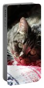 Angel Cat Portable Battery Charger