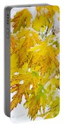 Autumn Snow Portrait Portable Battery Charger by James BO  Insogna