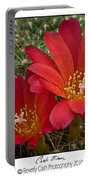 Cacti Bloom Portable Battery Charger