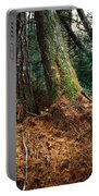 Fall Carpet Portable Battery Charger