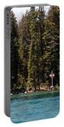 Lake Tahoe Sugar Pine Point Light Portable Battery Charger