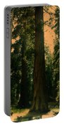 Yosemite Forest Portable Battery Charger