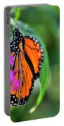 001 Making Things New Via The Butterfly Series Portable Battery Charger