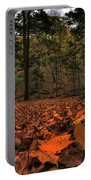 0013 Letchworth State Park Series Portable Battery Charger