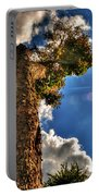 002 Reaching For The Sky Portable Battery Charger