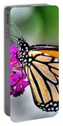 004 Making Things New Via The Butterfly Series Portable Battery Charger