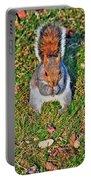 06 Grey Squirrel Sciurus Carolinensis Series Portable Battery Charger