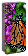 007 Making Things New Via The Butterfly Series Portable Battery Charger