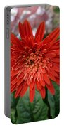 A Beautiful Red Flower Growing At Home Portable Battery Charger