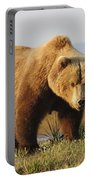 A Brown Grizzly Bear Ursus Arctos Portable Battery Charger