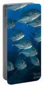 A School Of Bigeye Trevally, Papua New Portable Battery Charger by Steve Jones