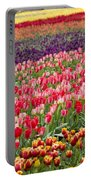 A Tulip Field Portable Battery Charger