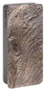 African Elephant Loxodonta Africana Portable Battery Charger