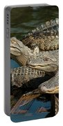 Alligator Pool Party Portable Battery Charger
