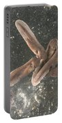 American Toad Tadpoles Portable Battery Charger