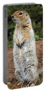 Arctic Ground Squirrel Portable Battery Charger