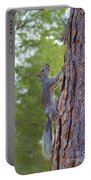 Arizona Grey Squirrel Portable Battery Charger