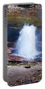 Artesia Geyser Portable Battery Charger