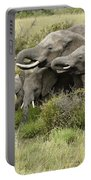 At The Waterhole Portable Battery Charger