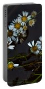 Autumn Farewell Portable Battery Charger