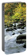 Autumn Stream 3 Portable Battery Charger