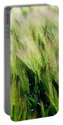 Barley, Co Down Portable Battery Charger
