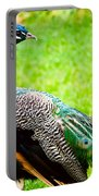 Beautiful And Pride Peacock On A Lawn Portable Battery Charger