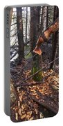 Beaver Marks Portable Battery Charger