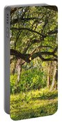 Bent Trees Portable Battery Charger