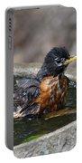 Bird Bath Fun Time Portable Battery Charger