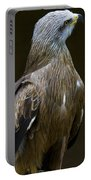 Black Kite 1 Portable Battery Charger