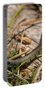 British Grass Snake Portable Battery Charger