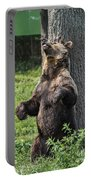 Brown Bear Itch Portable Battery Charger