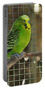 Budgerigar - Parakeet Portable Battery Charger